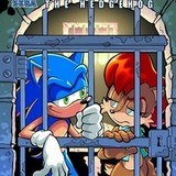 true or false sonic and sally get married in the future