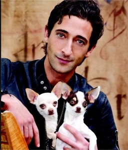 What are Adrien Brody's two dogs' names?