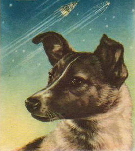 On November 3, 1957 the Soviet Union launched a female dog into space. Her now famous name was Laika. What did that name mean?