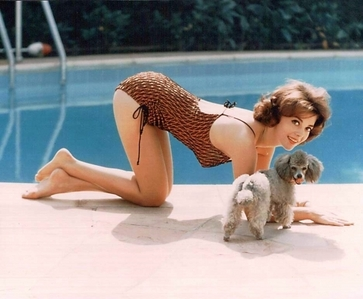 where is natalie wood born in ?