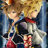 My 2 fave characters,Roxas with blonde hair,and Sora with dark brown hair! KHluver101 photo