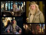 proffesor dumbledore ofcourse!he could teach me anything and evrything and hes a wonderfull person as well and im sure hed b gr8 2 b wiv(as a friend)lol