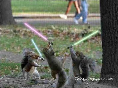 revenge of the squirrels....... :)