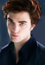 I am team EDWARD.No it doesn't really bother me that much.It will only end when Edward wins!!!!