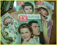I'm a collector of Bewitched memorabilia and merchandise. To date, I have over 600 items - both vintage and contemporary. I also collect pigs.