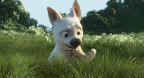Try to get Walt Disney pictures to make BOLT 2. We should Write them messages,if they expect high expectations they'll probably make another.