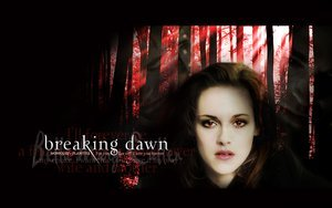 My preferito book in the twilight saga is breaking dawn.Because Renessemee is adoreable.And i believe that Breaking Dawn has più detail and ''power'' in it than the others.when i read it i felt like i was going through it too.The burning pain of becoming a vampire to the birth of Renessemee...And the Volturi twist at the end is something i cant put into words...Stephenie Meyer is a Genius...And she deserves the making of the Film for her..I can tell that alot of work went into these books...Thankyou Stephenie Meyer.