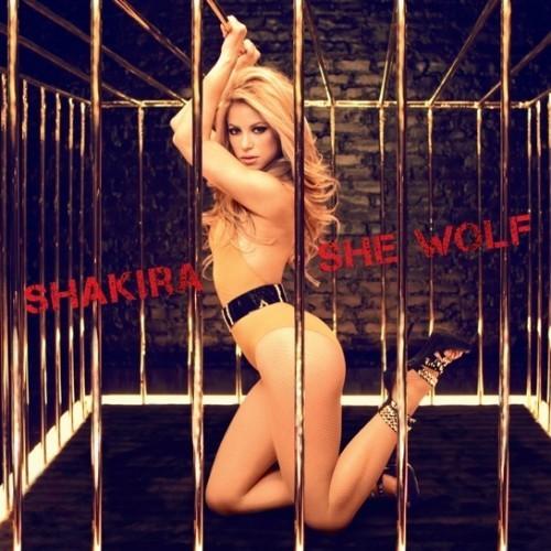she lupo da shakira, i really like that song!! ;D