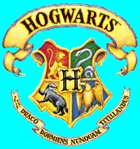 What Hogwarts House Do You Truly Think You Would Be In, Not House You Want