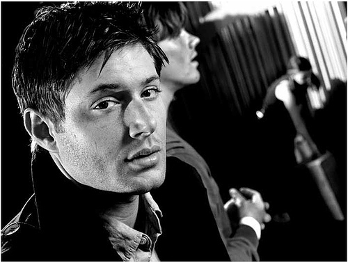 """Normally it is any Dean Winchester quote...so yeah, at the moment it is: """"I'm sitting in a laundromat, reading about my selfing sitting in a laundromat, reading about myself. My head hurts."""" Also, """"Angel یا not, I will stab آپ in the face."""" :DD"""