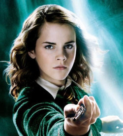 My favourite character is Hermione Granger. I like her personality. She seems aware of everything round her and seems know what she is doing most of the time. She is one person from the HP series that influences me a lot. She has all the qualities of a true wizard. Personally she is my role model.