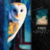 Owl =)
