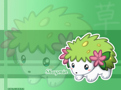 AND THIS IS SHAYMIN