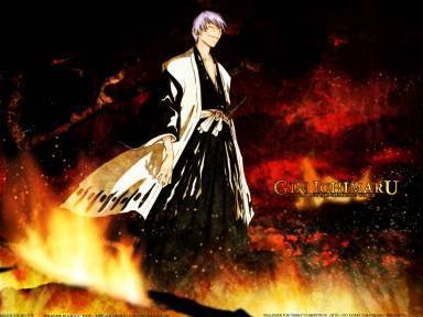 I would be a former captain but would be gin's right hand man in the espada