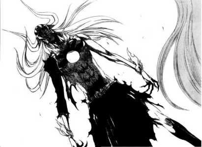 mine's the new transformation of hollow ichigo অথবা ichigo himself!!!