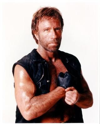 Pie is over used,they need to spice it up...WHY NOT CHUCK NORRIS~? u DONT F*** WITH THE CHUCK!*chu