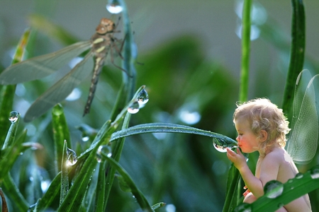 A baby fairy drinking morning dew. From MyTini on Deviantart.