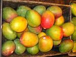 We hate people! and MANGOS♥ MANGOS♥ MANGOS♥ MANGOS♥ MANGOS♥ MANGOS♥ MANGOS♥ MANGOS�
