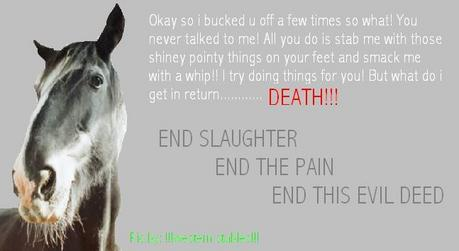 Horse Slaughter has been in the US for some time now. What's あなた thought/opinion on Horse slaughter