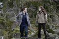 *TWILIGHT* - twilight-series photo