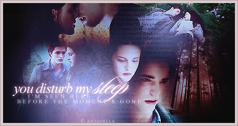 Edward & Bella Banner