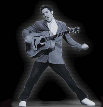 Elvis: the king of rock'n'roll