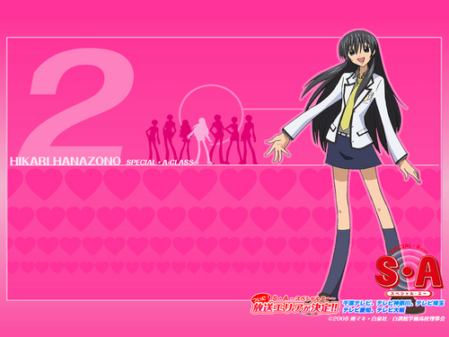Special A wallpaper called Hikari Hanazono