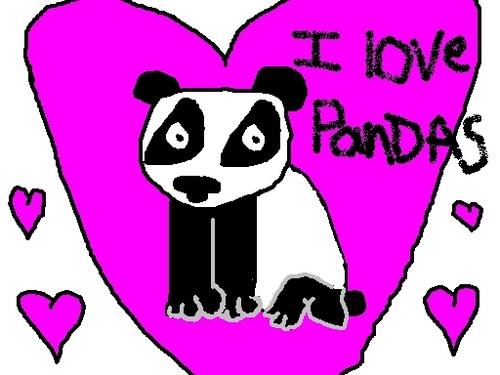 I 愛 pandas!