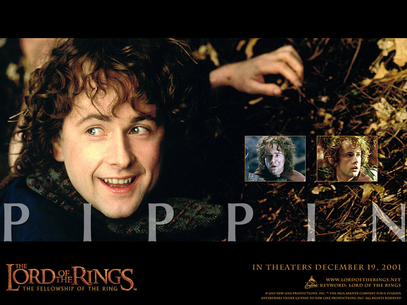 Pippin Lord Of The Rings. pippin - Lord of the Rings