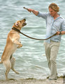 Marley and Me - book-to-screen-adaptations photo