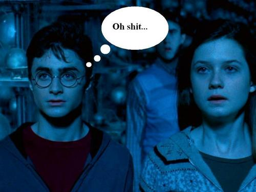 OOTP - Harry and Ginny