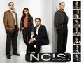 Season 6 - tony-ziva-mcgee-and-abby wallpaper