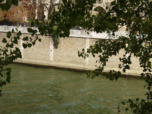 Seinen, Paris, France