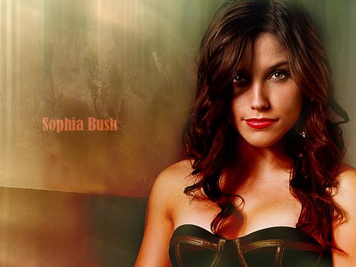 Sophia*