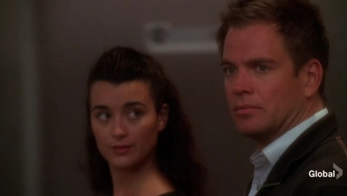 Tony and ZIva - tony-ziva-mcgee-and-abby Photo