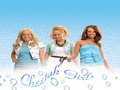 blueblast - the-cheetah-girls photo