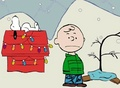 A Charlie Brown natal