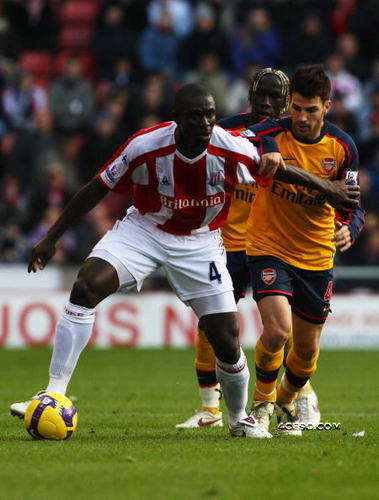 Arsenal vs. Stoke City,1 nov,2008