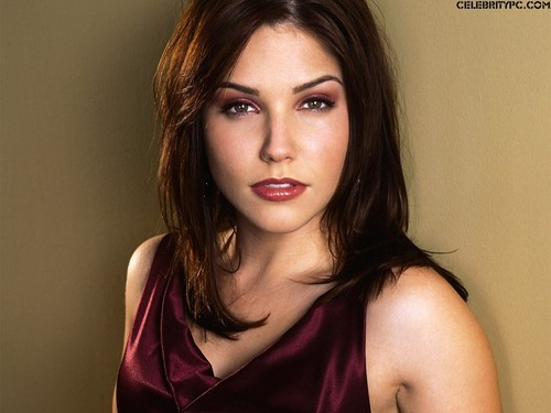 Brooke Davis/Sophia cespuglio, bush wallpaper
