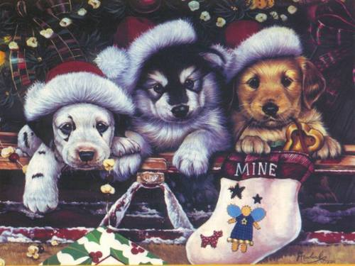 Weihnachten Doggies
