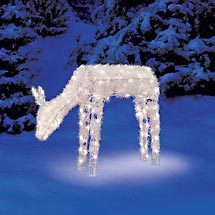 natal Reindeer ... Christnas 2008