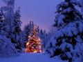 Christmas Scene - christmas wallpaper