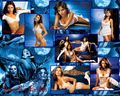 Dracula's Brides - van-helsing wallpaper