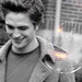 Edward - lovers-of-edward-and-jacob icon