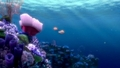 Finding Nemo (2003) - finding-nemo screencap