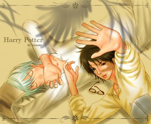 Harry & Draco: Phoenix