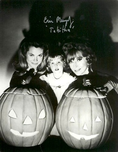 Have A Bewitched 2008 Halloween!