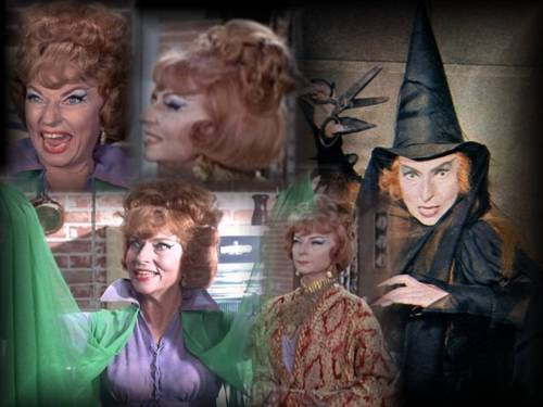 Have A Bewitched Halloween 2008!