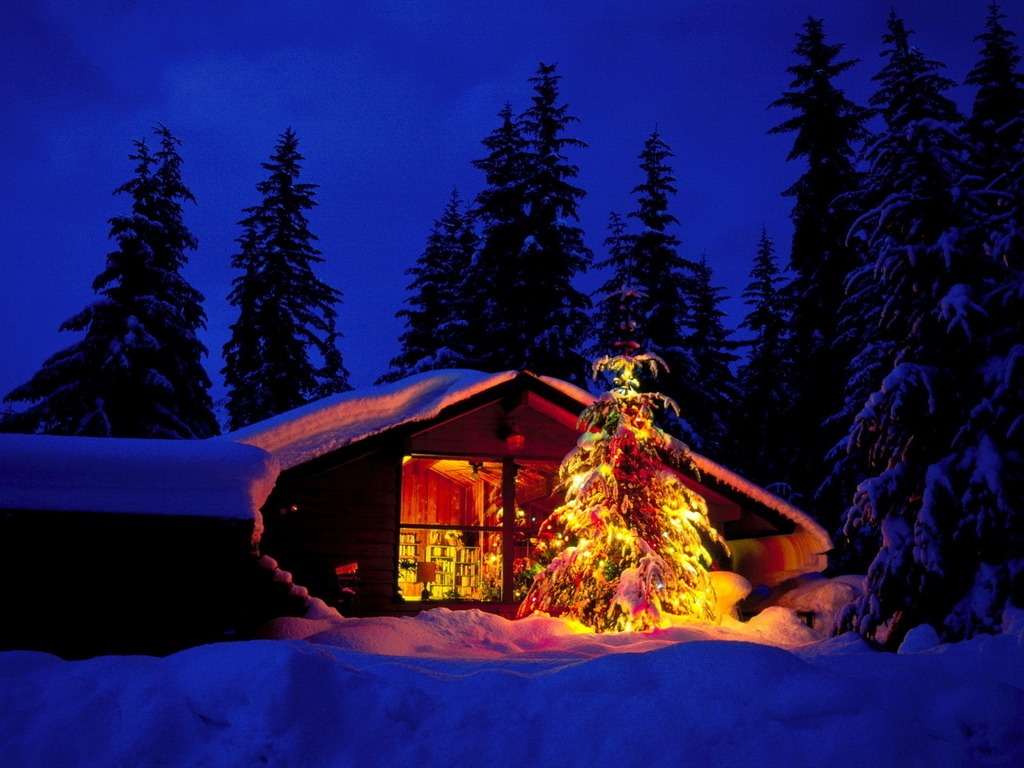 Holiday home christmas wallpaper 2735356 fanpop for At home christmas