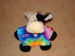 Look for Webkinz at da grocery stores